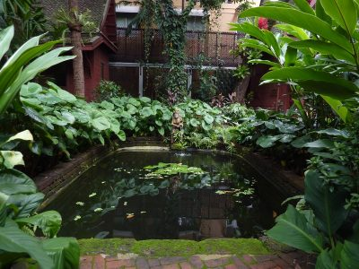 Le Bassin De La Jim Thompson's House