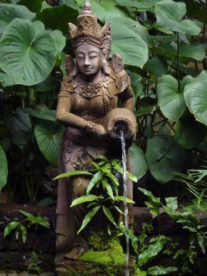 """Une Fontaine Dans La """"jungle"""""""