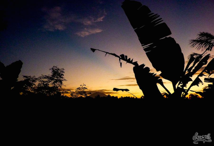 Le lever du soleil sur les rizières avec le Mont Batur dans le fond.