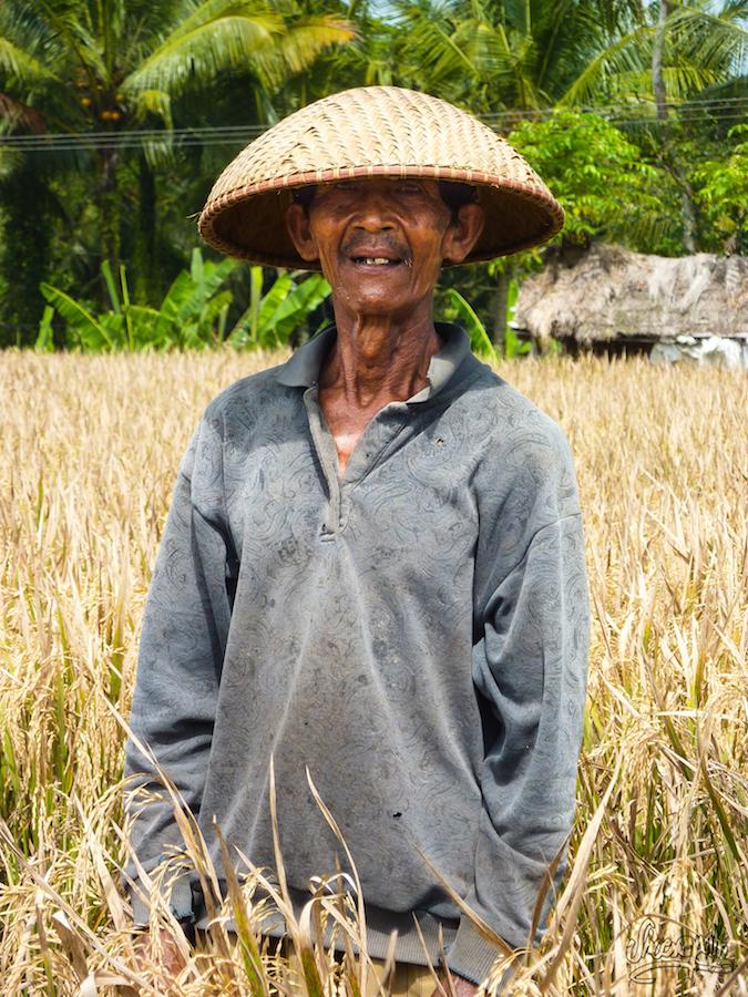 Un ancien dans son champ de riz, aux allentours d'Ubud