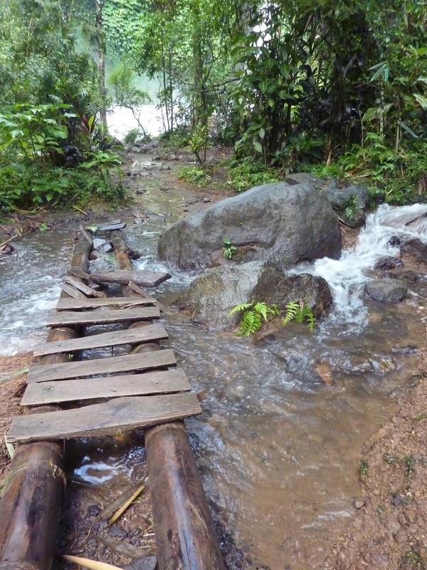 Dans la jungle vers la cascade