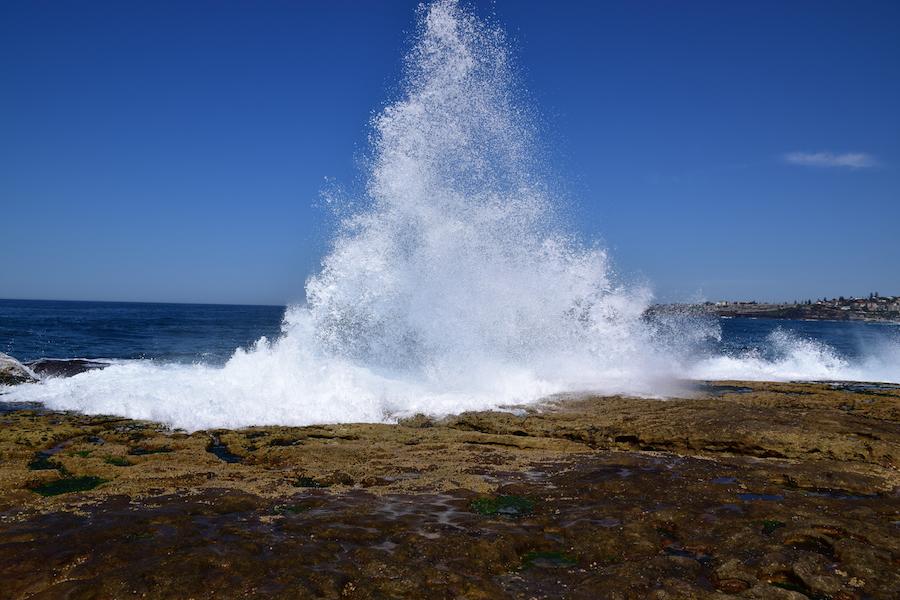 Les vagues de Bondi Beach