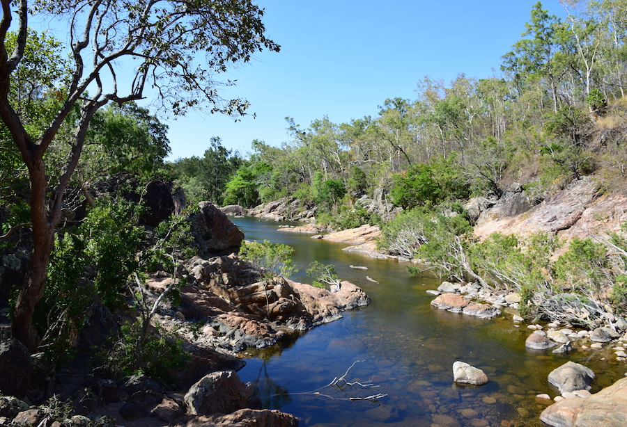 Aligator Creek