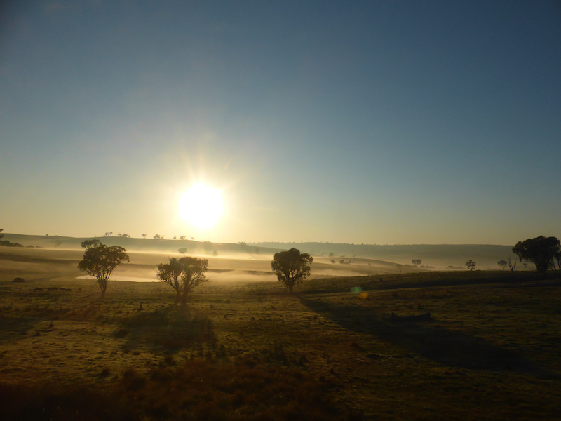 Le lever du soleil sur le bush