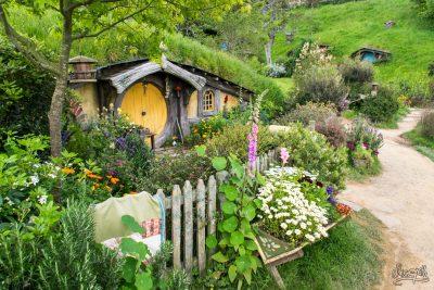 Joli trou fleuri à Hobbiton, le village Hobbit