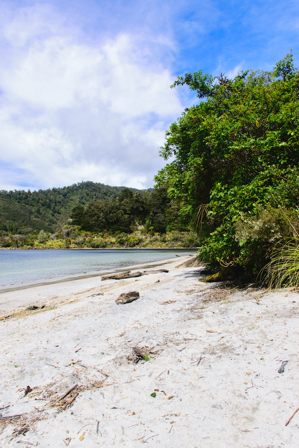 Great Walk of Lake Waikaremoana - Shoesyourpath