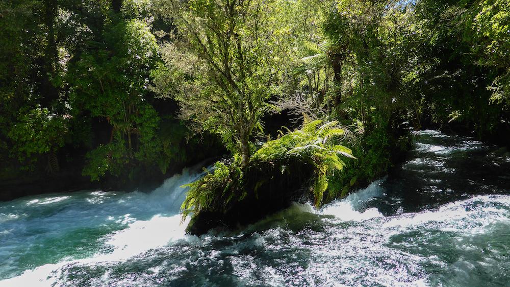 Les rapides de Okere Falls