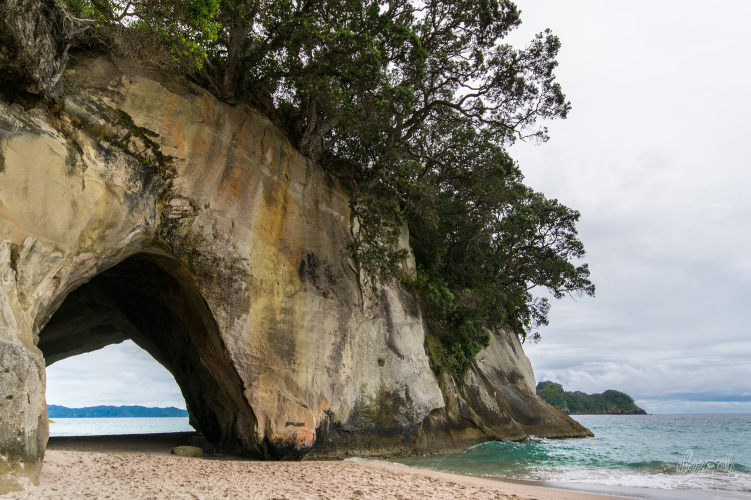 Cathedral Cove, incontournable du Coromandel