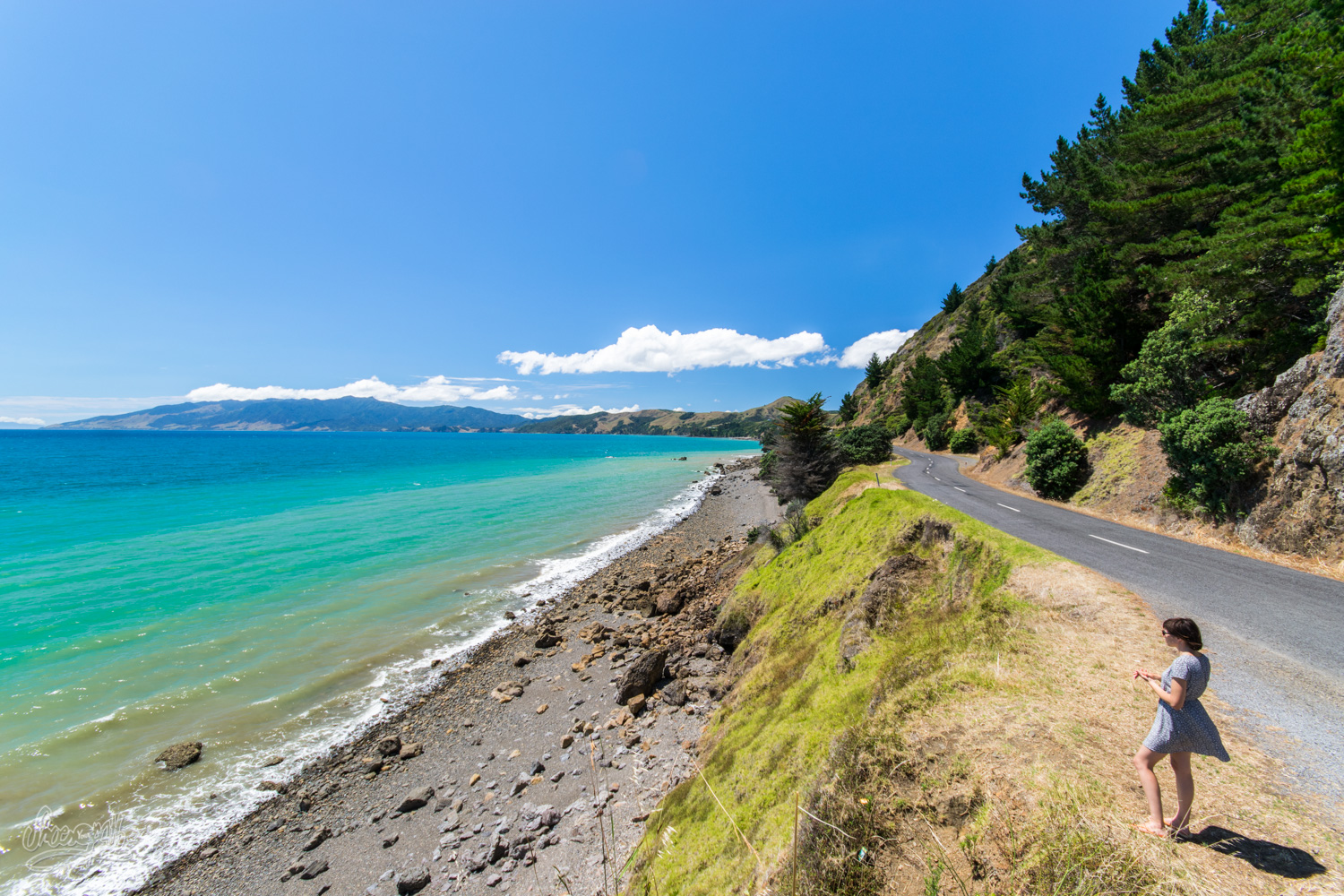 Coromandel, A Piece Of Paradise 2h From Auckland