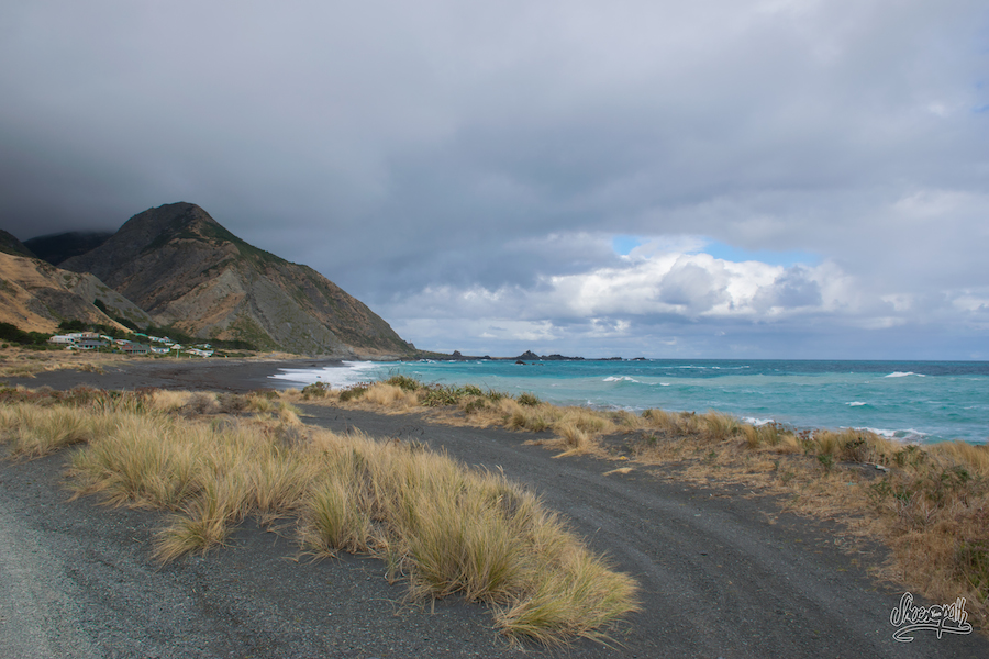 La route de Cape Palliser