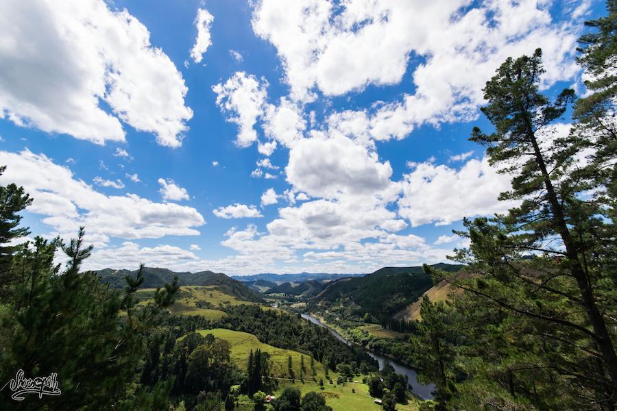 sites de rencontres Wanganui Vitesse datant Jam Tree