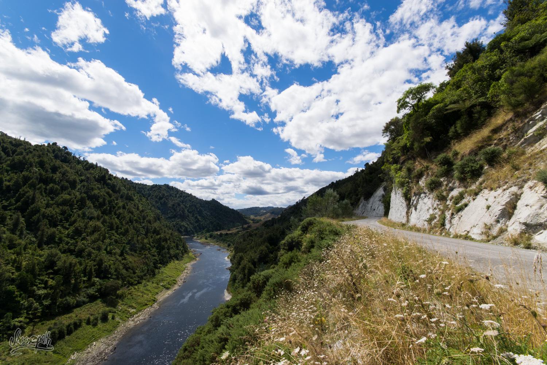 Sur les bords de la Whanganui River