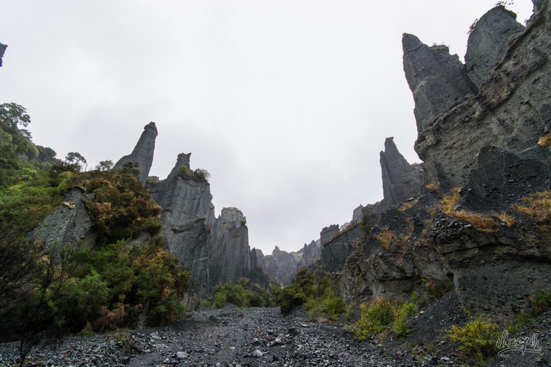 Les Pinnacles de Cape Palliser, le Chemin des Morts du Seigneur des Anneaux