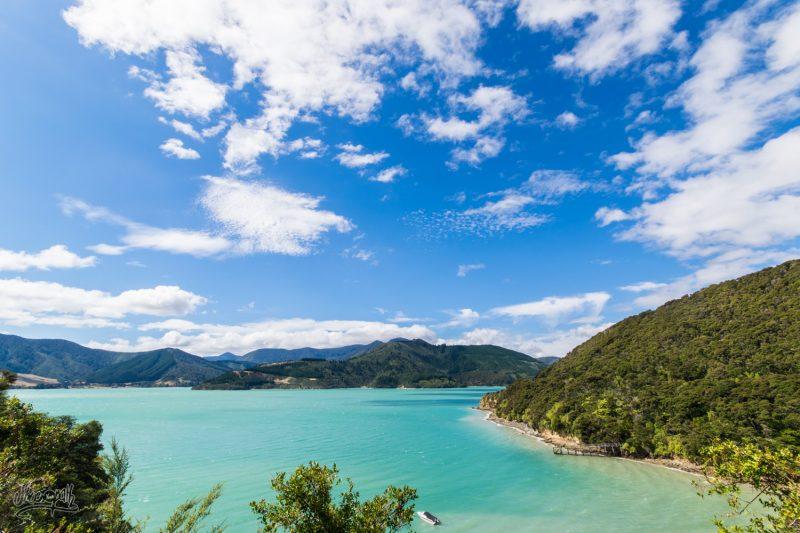 Les Marlborough Sounds, Petit Coin De Paradis Tranquille