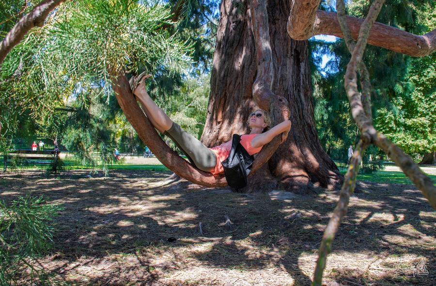 Relax Time Dans Les Jardins Botaniques