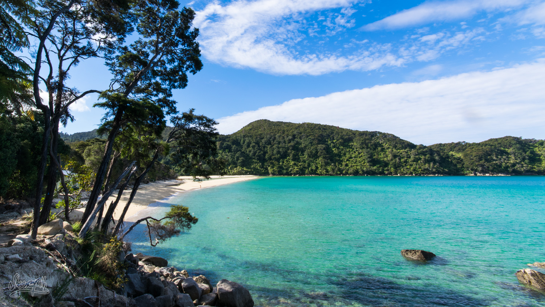 Bark Bay, Notre Second Camping Sur L'Abel Tasman