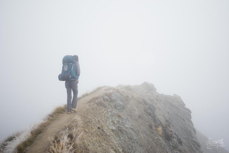 Sur La Crête De Roys Peak