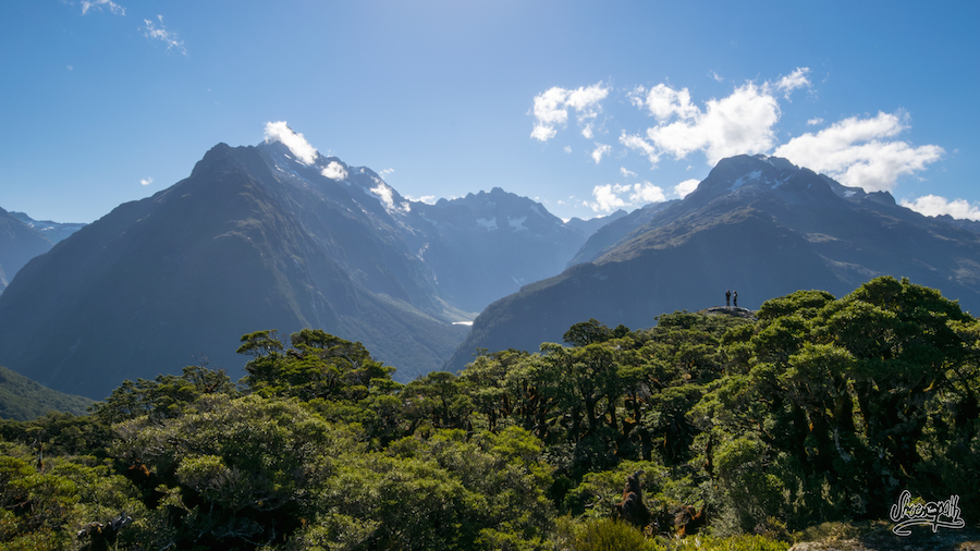 Au sommet de Key Summit, vue sur les toits du Fiordland National Park (Photo par Mariette)