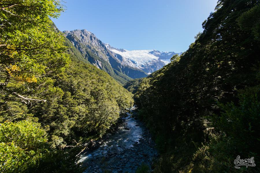 La Rivière Que Le Sentier Suit Dans La Forêt