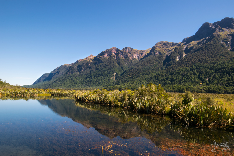 Le Fiordland National Park se reflète dans les Mirror Lakes