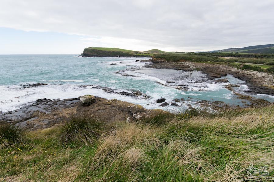 La côte des Catlins