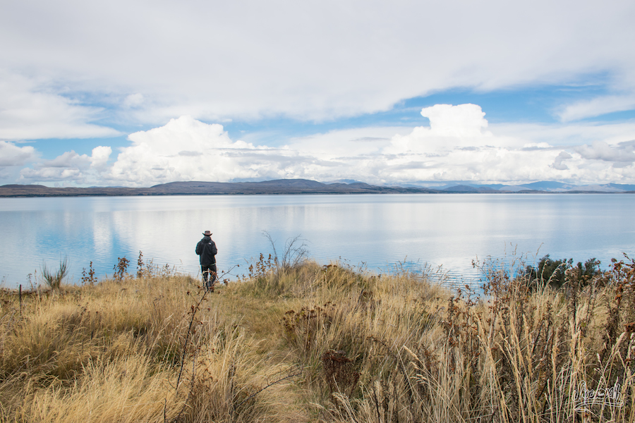 Pause Sur Les Bords Du Lac Pukaki (Photo Par Mariette)