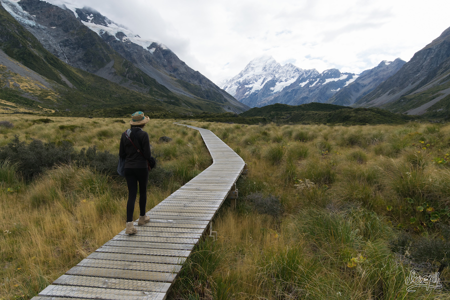 En Route Vers Le Mont Cook