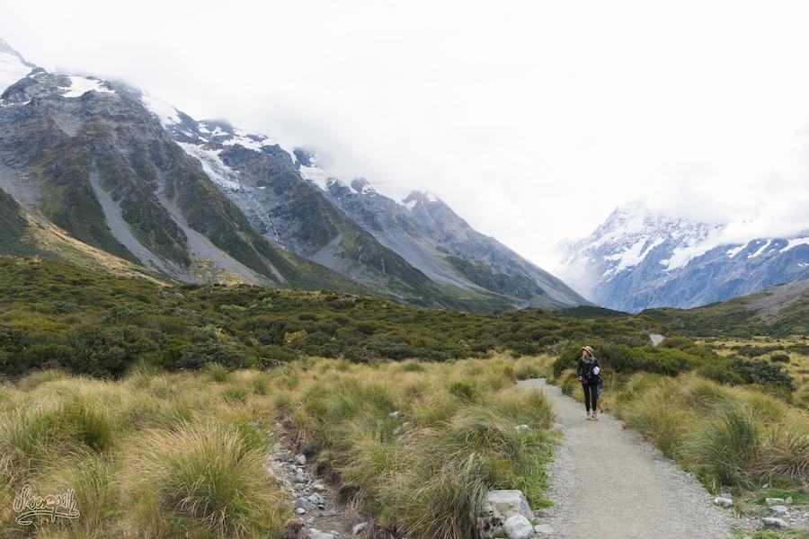 En revenant du Mont Cook