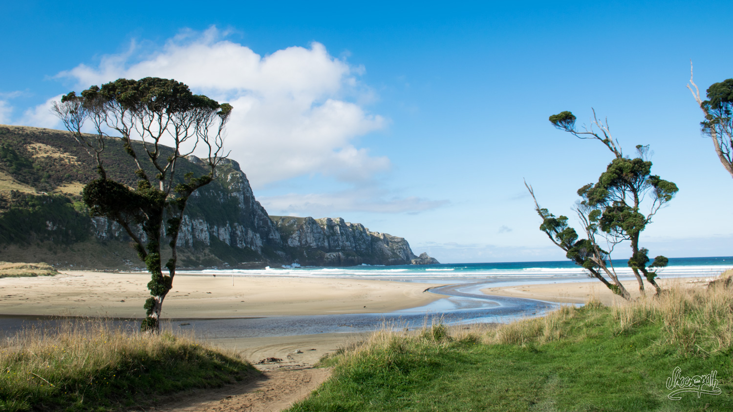 Purakaunui beach, our tent is pitched just a few meters from the sand !
