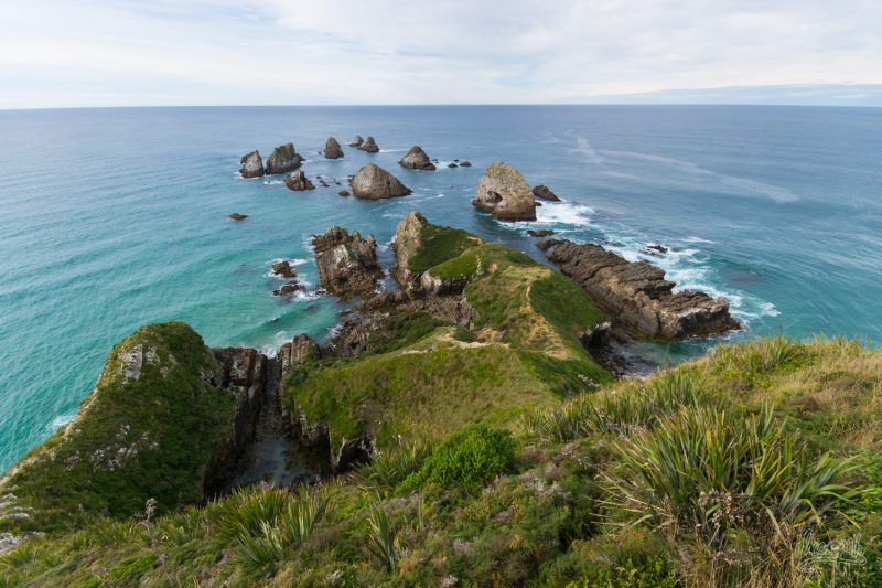 Au Bout De Nugget Point, Bout Du Bout Des Catlins
