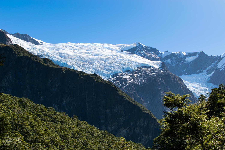 Le Rob Roy Glacier, vu depuis le chemin