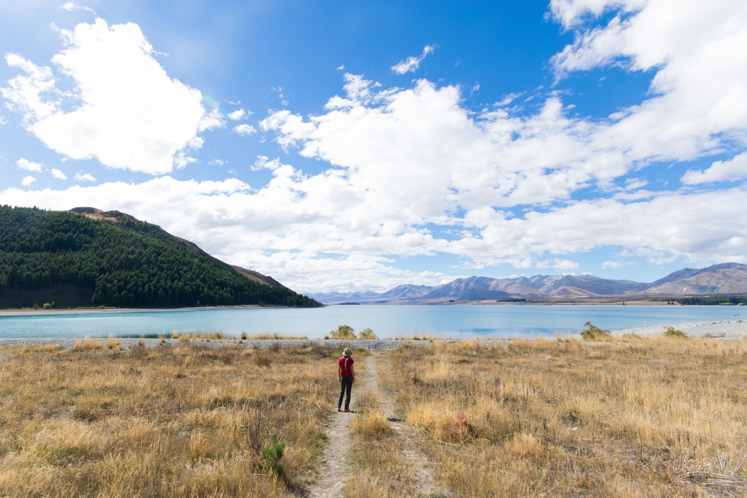 Sur Les Bords De Lake Tekapo