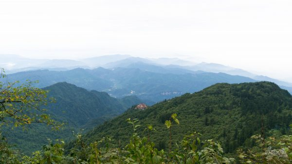 Temple Zen En Pleine Jungle Sur La Montagne D'Emeishan