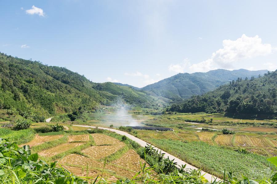 Cultures en terrasse près de Wei Dong