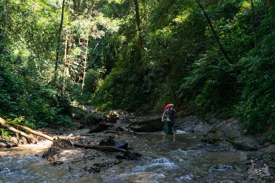 En Pleine Exploration De La Jungle Pour Trouver La Cascade De Bai Zhang Ga