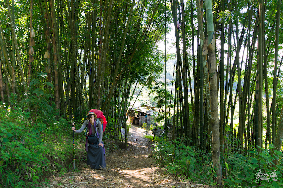 30- Lost in the jungle of Xishuangbanna