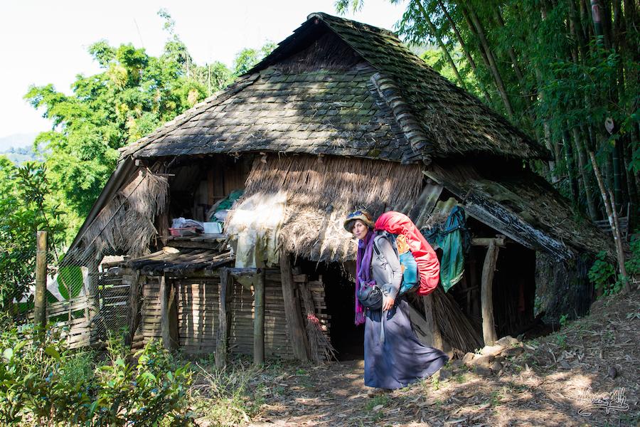 29- Une cabane tradionelle en pleine jungle