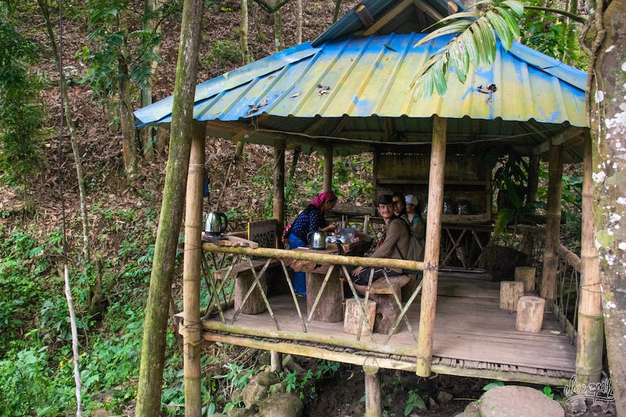 Cabane de dégustation de thé en pleine jungle