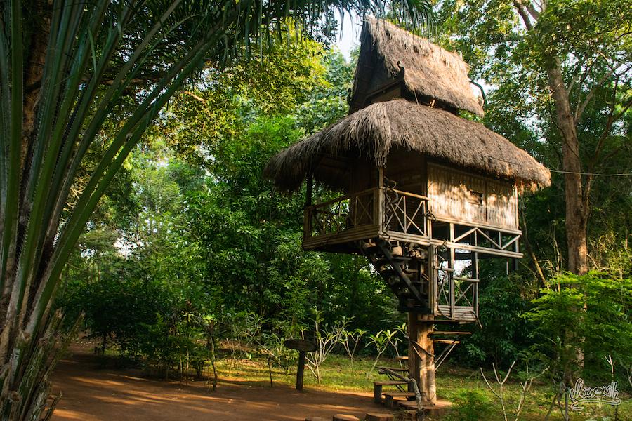 Dans Le Faux Village Ethnique De Tad Faek : Ils Ont Même La Maison D'Assurancetourix