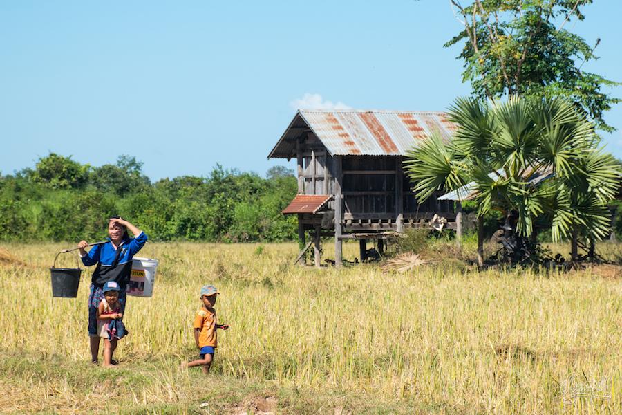 Une Famille Dans Ses Champs Le Long Du Mékong