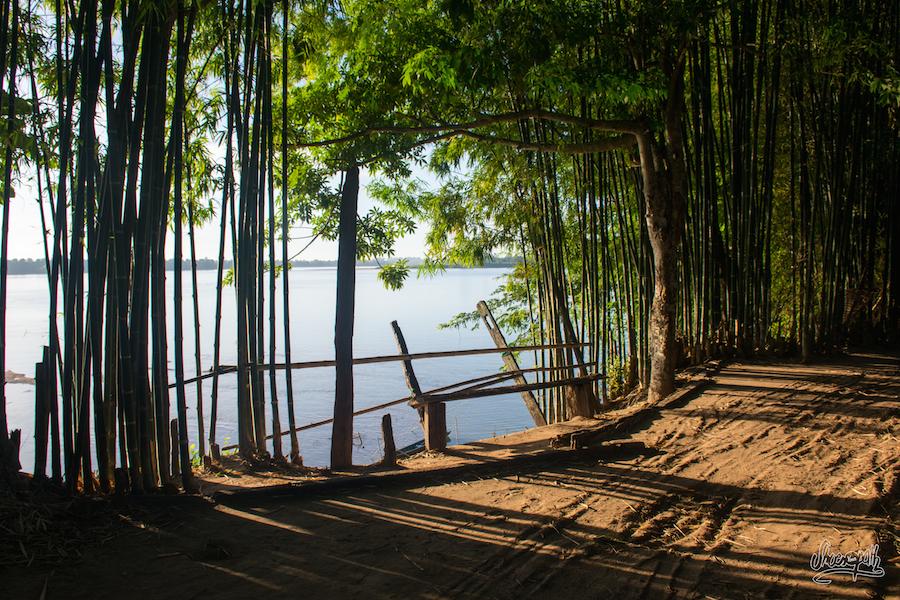 Notre Chemin De Terre à L'ombre Des Bambous Le Long Du Mékong