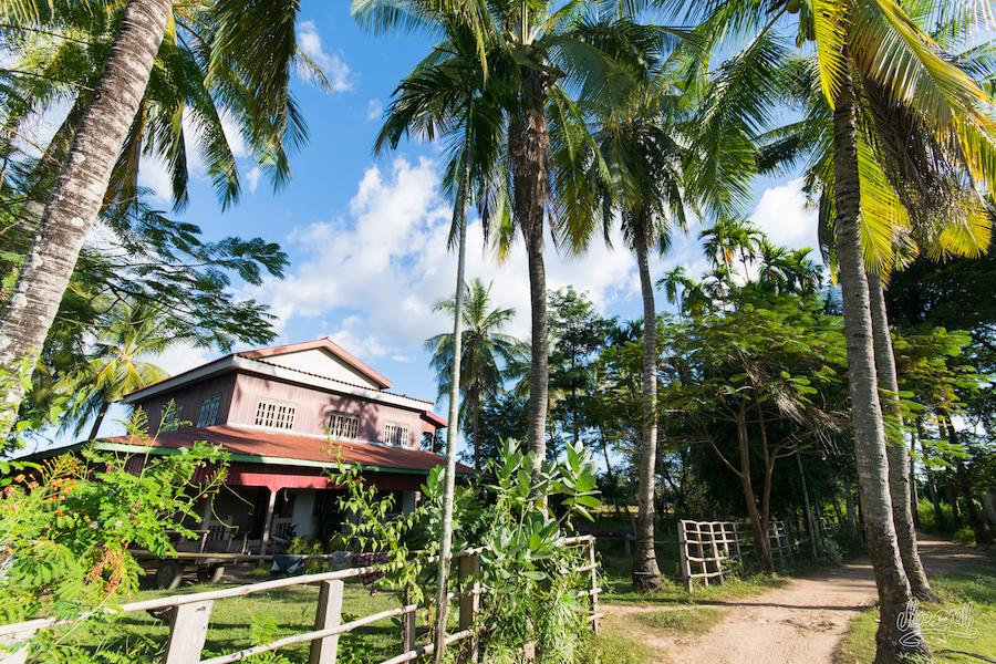 Silence Et Paix, à Quelques Encablures Des Terrasses Des Bars Et Restos De Don Khon