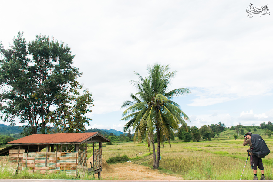 Dans Les Campagnes Que Nous Traversons Entre Paklay Et Vientiane
