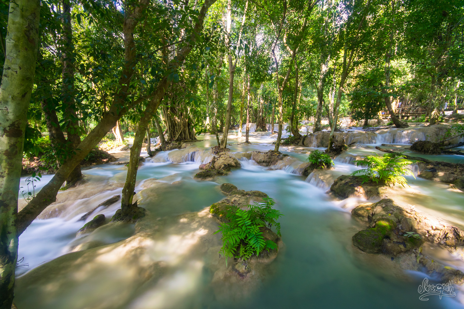 Tad Sae waterfalls, away from the tourists platforms, in the forest