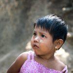 Petite Birmane Aux Cheveux Courts