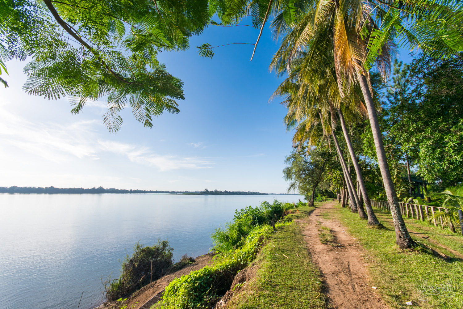The path along the Mekong