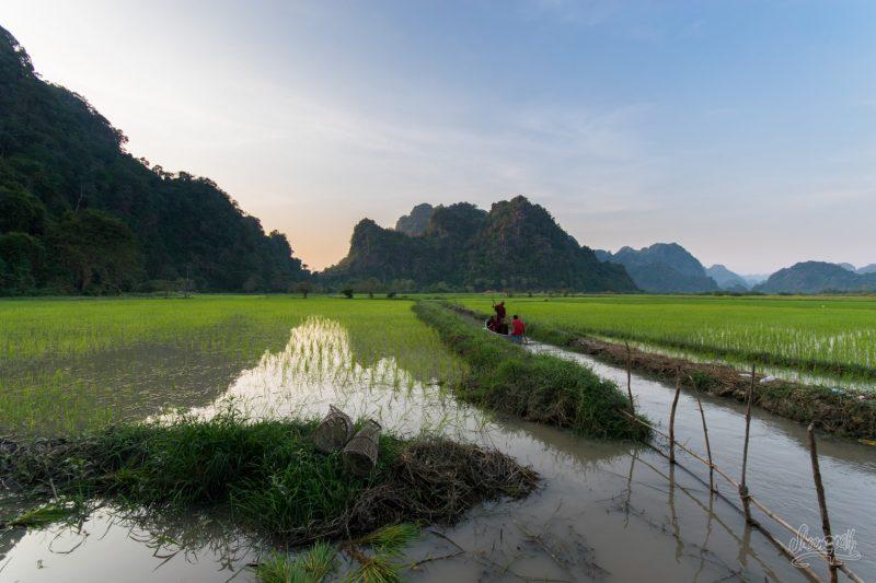 Coucher De Soleil Sur Les Rizières Autour De Hpa An. Bienvenue Au Myanmar !