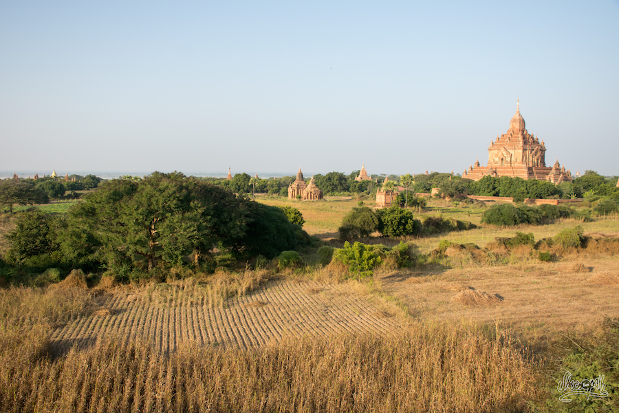 Bagan Champêtre