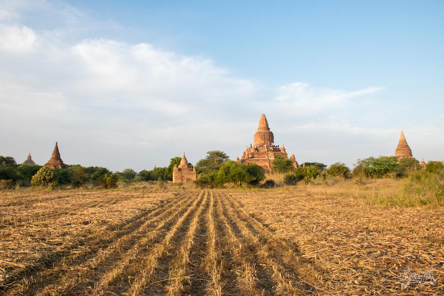 Cultures Et Pagodes à Bagan