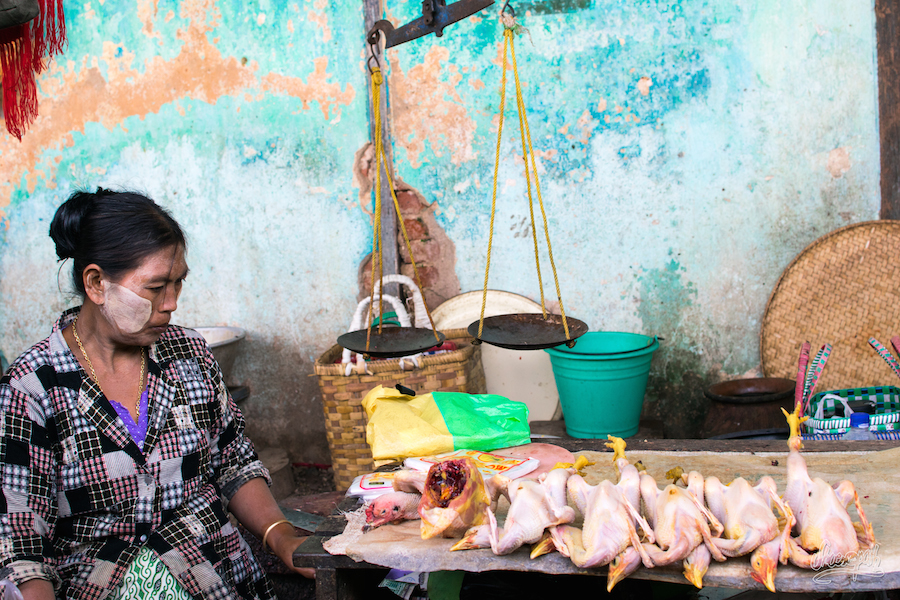Vendeuse de poulets du marché de Bagan